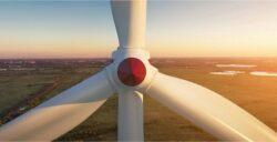5 ações que geram créditos de carbono e estão alinhadas ao ESG